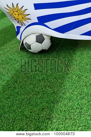 Soccer Ball And National Flag Of Uruguay,  Green Grass