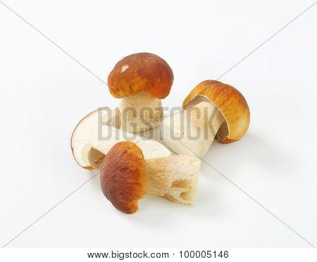 three and half boletus mushrooms on white background