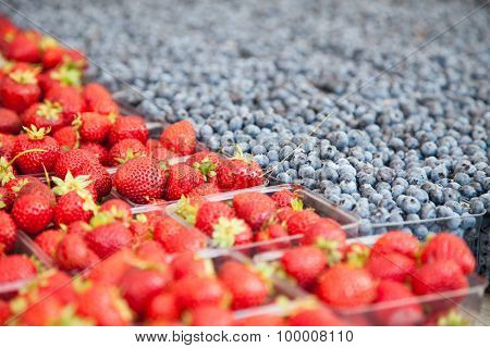 Boxes of strawberries and blueberries