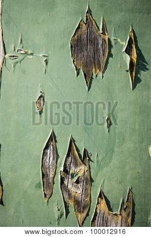 Green Old Painted Wooden