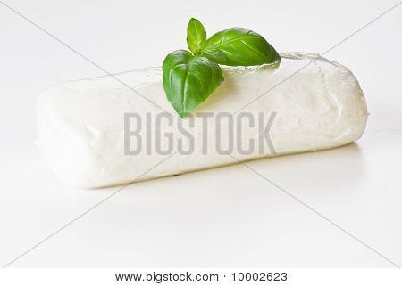 Basil Leaf On Mozzarella