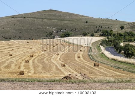 Harvested Field Near Avebury. UK