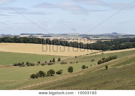 Rolling Countryside. Wilts. UK