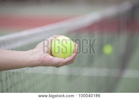 Woman Hand Holding The Tennis Ball