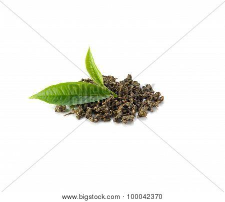Fresh Tea Leaves, Dried Tea On White Background.
