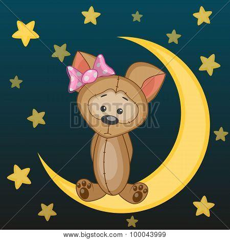 Cute Dog On The Moon