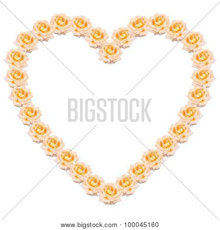 The Heart Of The Tea Roses Isolated On A White Background