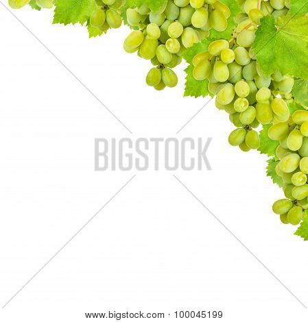 Bunch Of Green Grapes Isolated On A White Background