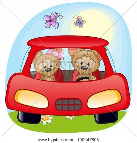 Two Puppys In A Car