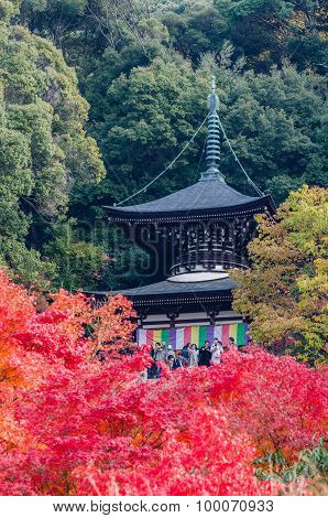 Eikando Temple, Colorful Autumn Leaf Season In Japan