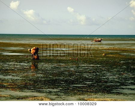 African fisherman looking for crabs