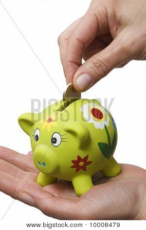 coin in a piggy bank isolated on white background