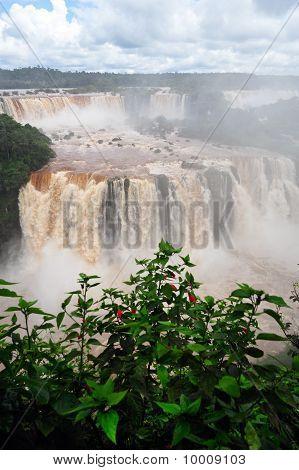 Iguazu waterfalls landscape