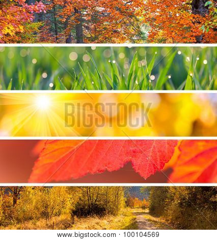 Collection of Autumn Headers - colorful fall season abstract  backgrounds for your website