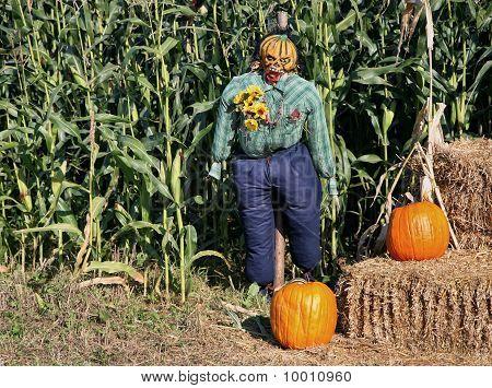 Corn Field Scarecrow