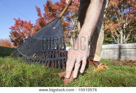 Getting that last leaf by hand