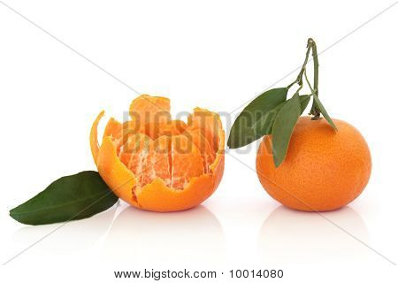 Tangerine Fruit With Leaf Sprig