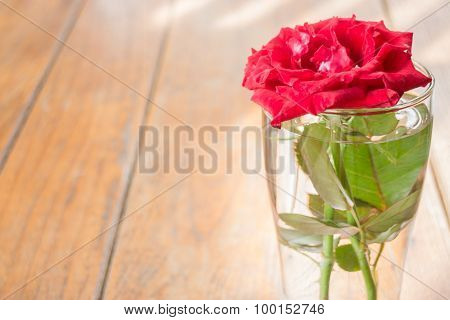 Beautiful Red Rose On Wooden Table