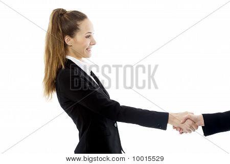 young businesswoman handshake