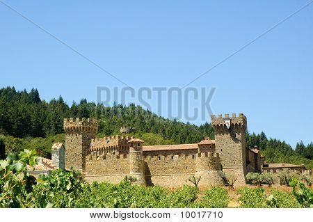castle in the vineyard