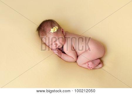 Newborn Baby Girl Sleeping On A Yellow Blanket