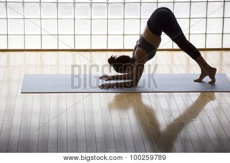 Above shot of a young woman practicing in a yoga studio. Dolphin pose, preparation for an inversion