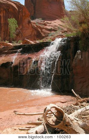 Coyote Gulch Waterfall Wooden Log Slickrock