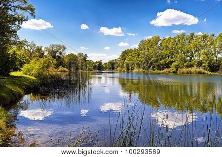 A Lake Of The Danube-auen National Park Vienna