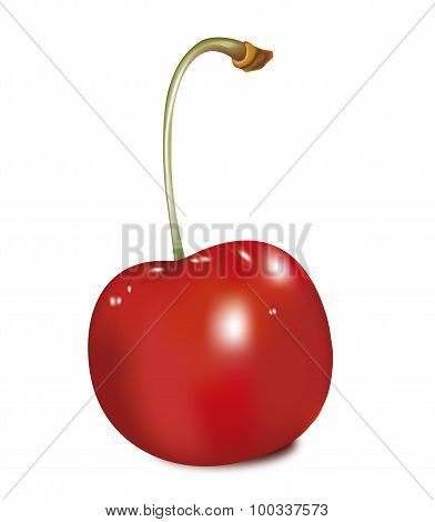 Berry cherry, green leaf, food red,