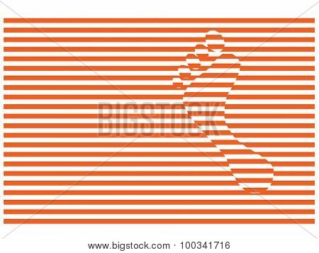 Stripes And Foot Step