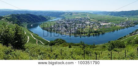 Piesport On The River Mosel In Germany