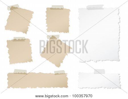 Set of various torn note papers with adhesive, sticky tape on white background