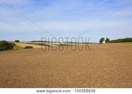 Yorkshire Wolds Agricultural Scenery