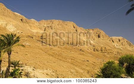 Orange Mountains In Judean Desert
