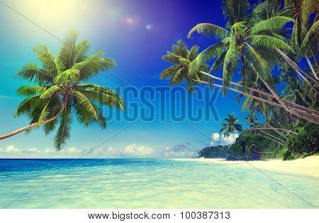 Tropical Paradise Beach Seascape Travel Destination Concept