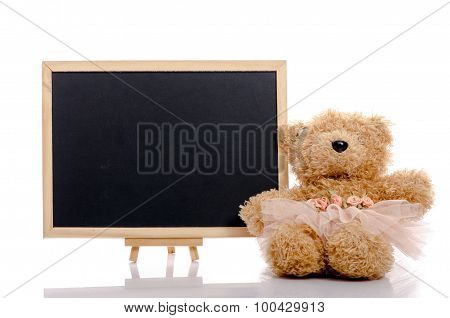 Close up of blackboard and toy bear on white background isolated
