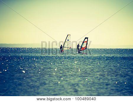 Windsurfers Swimming In Sea.