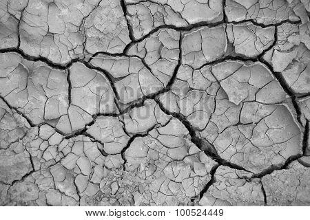 Cracked Grey Ground