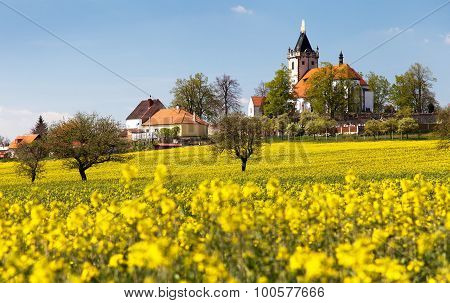 Church And Golden Rapeseed Field