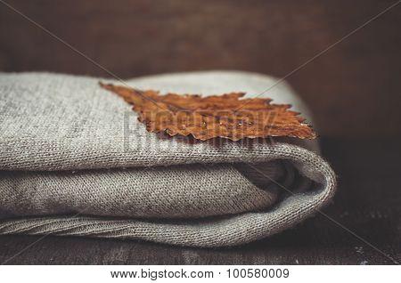 Knitted Woolen Cardigan And Oak Leaf