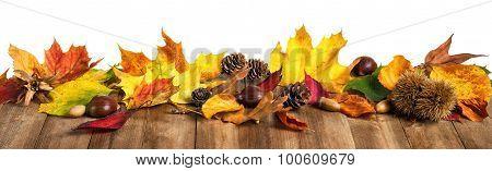 Autumn Leaves On Wooden Table, Studio Isolated