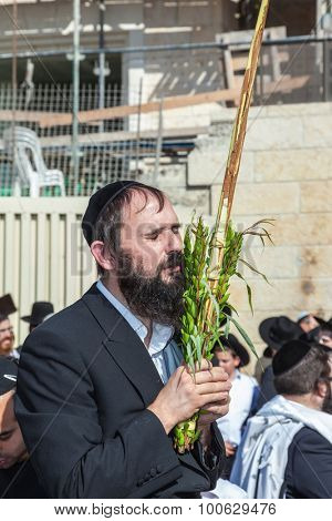 JERUSALEM, ISRAEL - OCTOBER 12, 2014:  Morning autumn Sukkot. The area in front of Western Wall of Temple filled with people. Pilgrims brought the prayer ritual and four plants