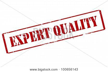 Rubber stamp with text expert quality inside vector illustration poster