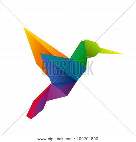 rainbow vector hummingbird