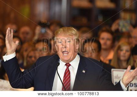 Donald Trump gestures emphatically