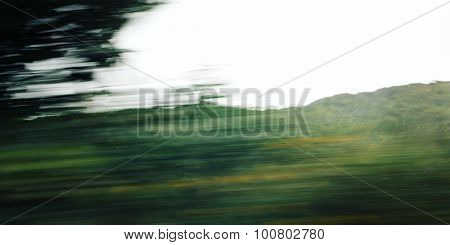 Defocused Trees Viewed Through A Car Windscreen. Aged Photography.