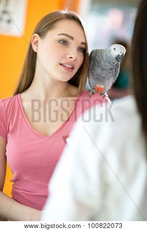 Owner of parrot listens advices of doctor with pet on shoulder in vet infirmary