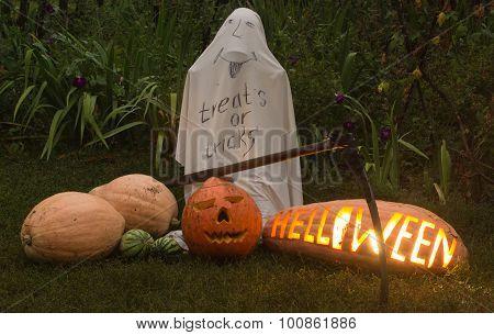 Treats Or  Tricks, Helloween Pumpkin