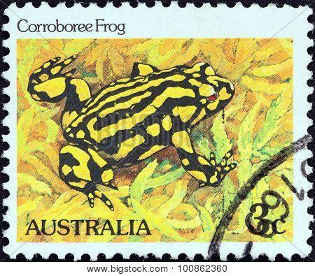 AUSTRALIA - CIRCA 1981: A stamp printed in Australia shows Corroboree frog