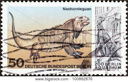 WEST BERLIN - CIRCA 1977: A stamp printed in Germany shows a Rhinoceros iguana (Cyclura cornuta)